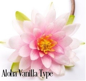 Aloha Vanilla* Fragrance Oil 19774
