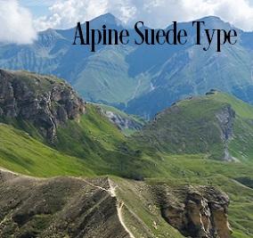 Alpine Suede* Fragrance Oil 19776