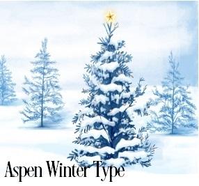 Aspen Winter* Fragrance Oil 19791