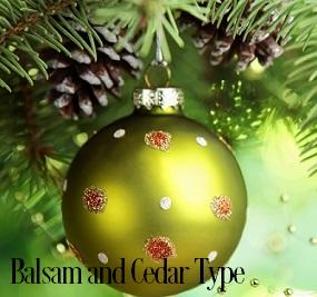 Balsam and Cedar* Fragrance Oil 19799