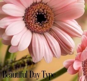Beautiful Days* Fragrance Oil 19813
