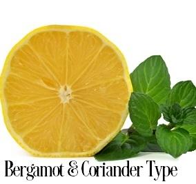 Bergamot And Coriander* Fragrance Oil 19817
