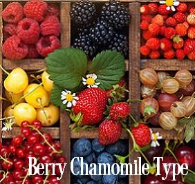 Berry Chamomile* Fragrance Oil 19820