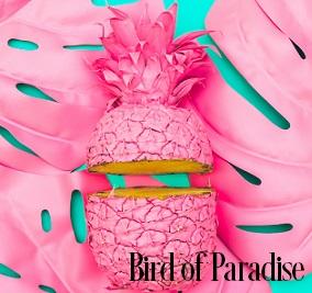 Bird Of Paradise Fragrance Oil 19825