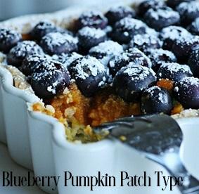 Blueberry Pumpkin Patch* Fragrance Oil 19847