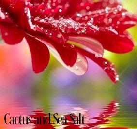 Cactus and Sea Salt Fragrance Oil 19873