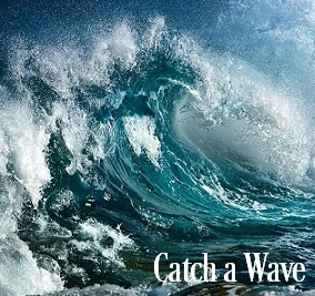 Catch A Wave Fragrance Oil 19892
