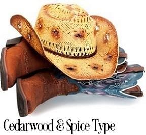 Cedarwood And Spices* Fragrance Oil 19893