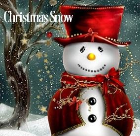 Christmas Snow Fragrance Oil 19918