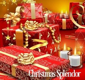 Christmas Splendor Fragrance Oil 19919