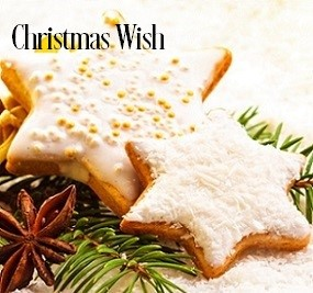 Christmas Wish* Fragrance Oil 19920