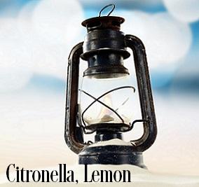 Citronella (Lemon) Fragrance Oil 19935