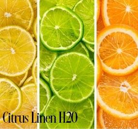 Citrus Linen H2O Fragrance Oil 19937