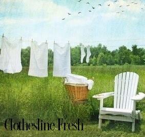 Clothesline Fresh Fragrance Oil 19945