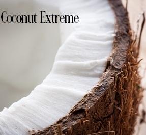Coconut Extreme Fragrance Oil 19950