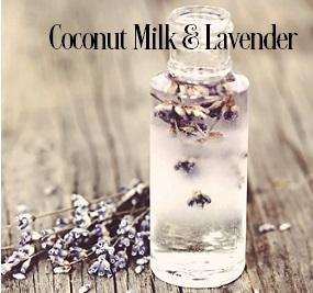 Coconut Milk and Lavender Fragrance Oil 19953