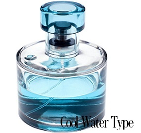 Cool Water* Fragrance Oil 19961