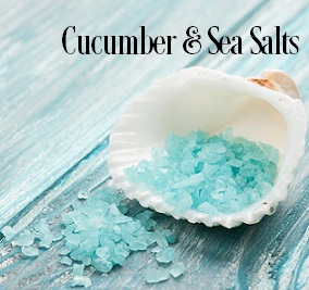 Cucumber and Sea Salts Fragrance Oil 19979