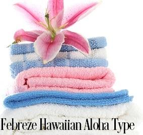 Hawaiian Aloha* Fragrance Oil 20006