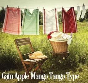 Apples Mangos Tango* Fragrance Oil 20029