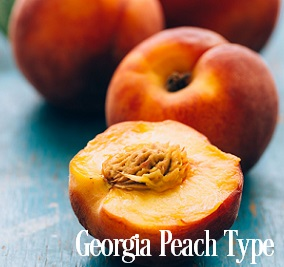 Georgia Peaches* Fragrance Oil 20034