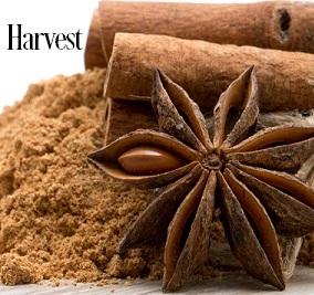 Harvest Fragrance Oil 20056