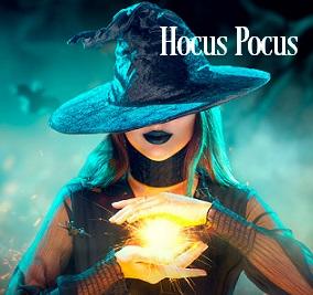 Hocus Pocus Fragrance Oil 20063