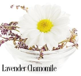 Lavender Chamomile Fragrance Oil 20106