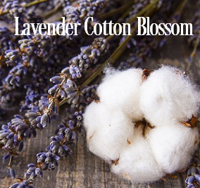 Lavender Cotton Blossom* Fragrance Oil 20107
