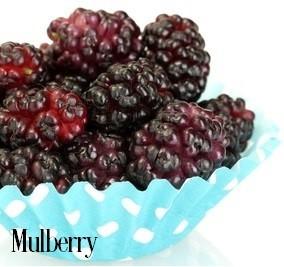 Mulberry Fragrance Oil 20160