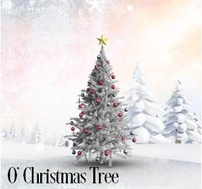 O' Christmas Tree Fragrance Oil 20170