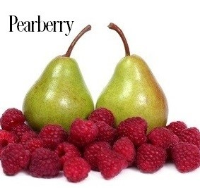 Pearberry Fragrance Oil 20186