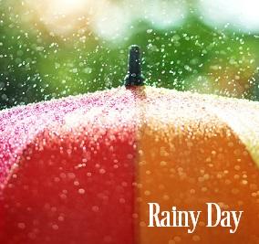 Rainy Day Fragrance Oil 20254