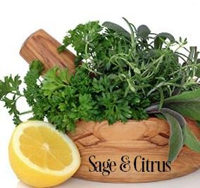 Sage And Citrus* Fragrance Oil 20273