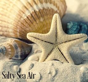 Salty Sea Air Fragrance Oil 20279