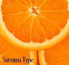 Satsuma* Fragrance Oil 20284
