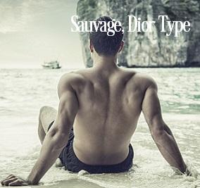 Sauvage For Men* Fragrance Oil 20285