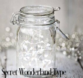 Secret Wonderland* Fragrance Oil 20288