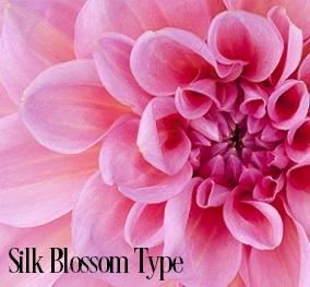 Silk Blossom* Fragrance Oil 20294