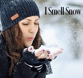 I Smell Snow Fragrance Oil 20077