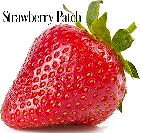 Strawberry Patch Fragrance Oil 20320