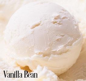 Vanilla Bean Fragrance Oil 20356